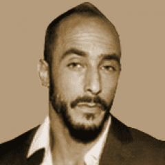 אלון שר